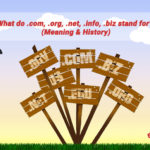 What do .com, .org, .net, .info, .biz stand for? (Meaning & History)